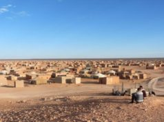 Western Sahara: Morocco's Autonomy Plan Gains International Support