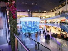 Gigantic aquarium opens in shopping mall with 3,000 fish, 264,000 gallons of water and the strength to withstand earthquakes