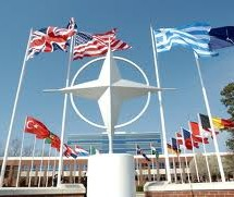 NATO may look at training for Libya: official