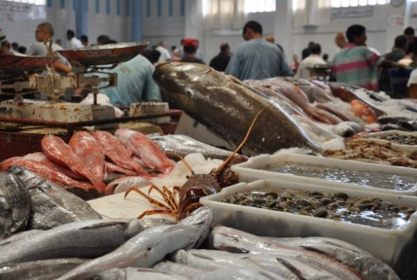 Morocco First Fish Exporter in Africa