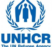Thousands of Syrians flee Egypt for Italy: UNHCR