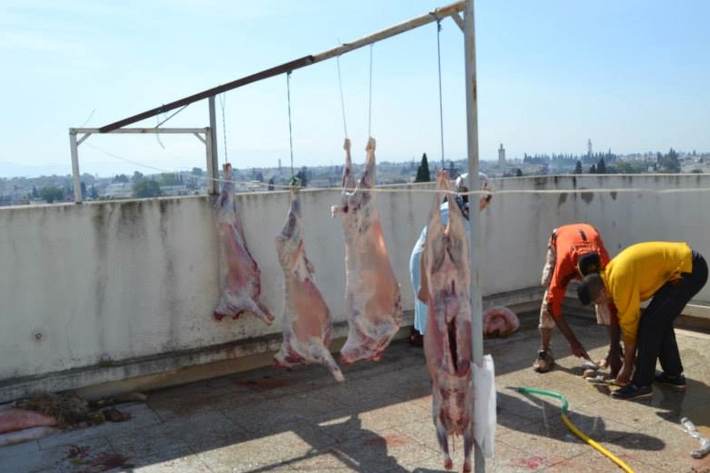Eid Al Adha. Slaughtering the sheep Photo by MWN