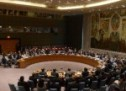 Security Council Refuses Inclusion of Western Sahara in Annual Meeting With AU