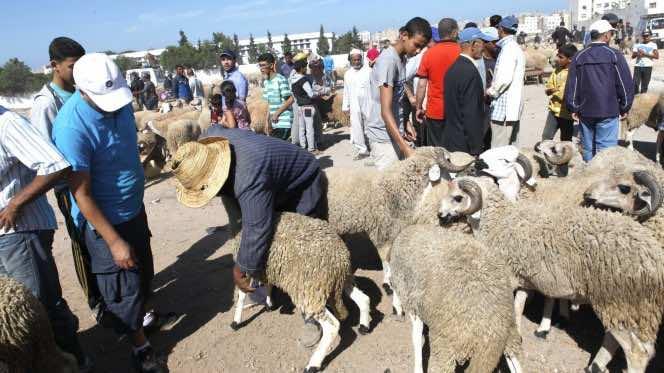 Eid al-Adha in Morocco