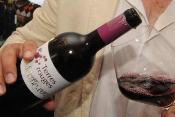 Morocco, first exporter of wine in the Arab World
