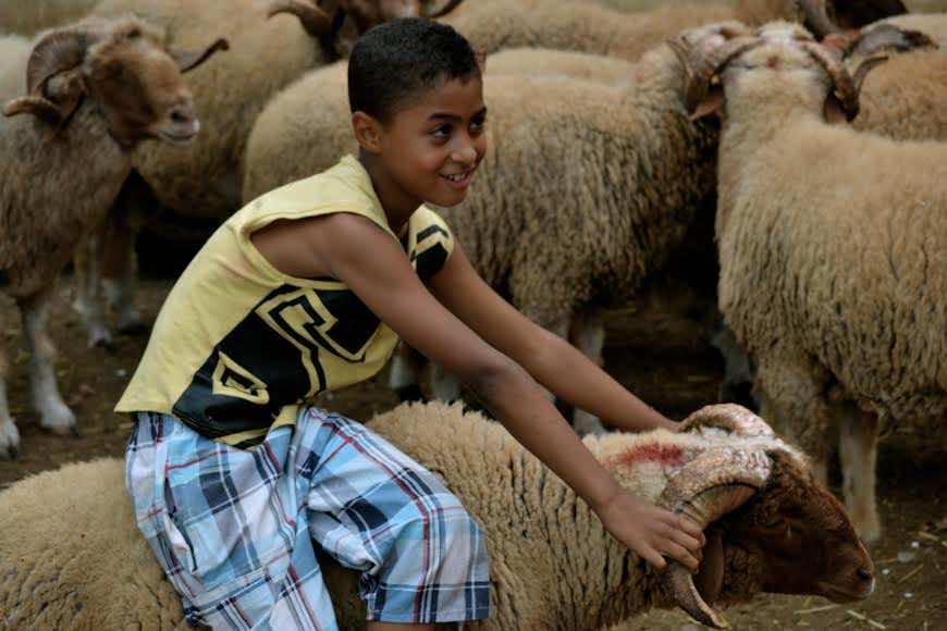 Eid Al Aha in Morocco