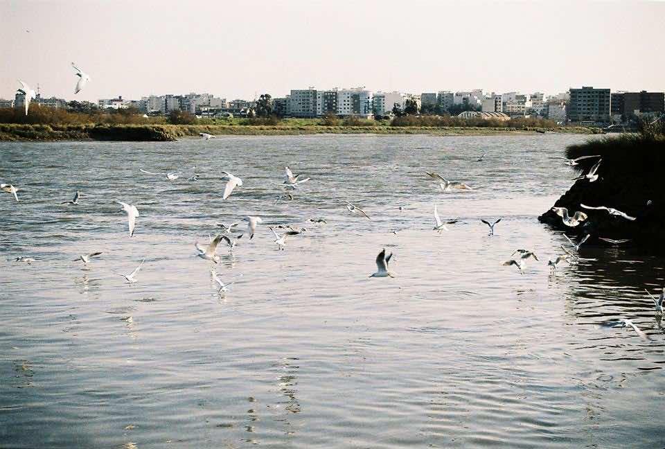 Kenitra Gharb Chrarda Beni Hssen Morocco morocco's kenitra: a city of contrasts