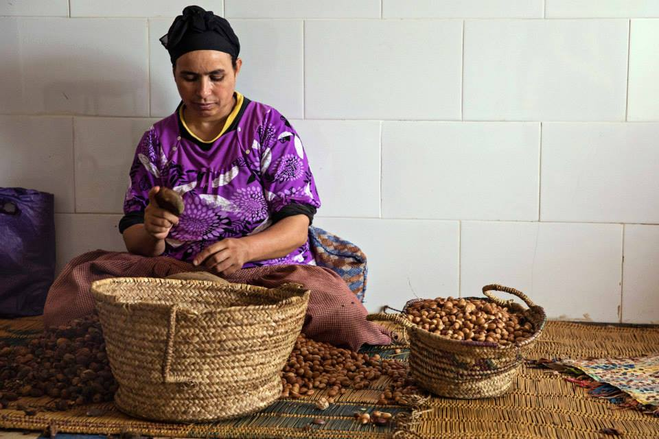 A Berber women patiently goes through the motions of cracking argan nuts to retrieve the kernels.