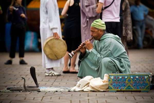 A Snake Charmer in Marrakech Dies from Snakebite