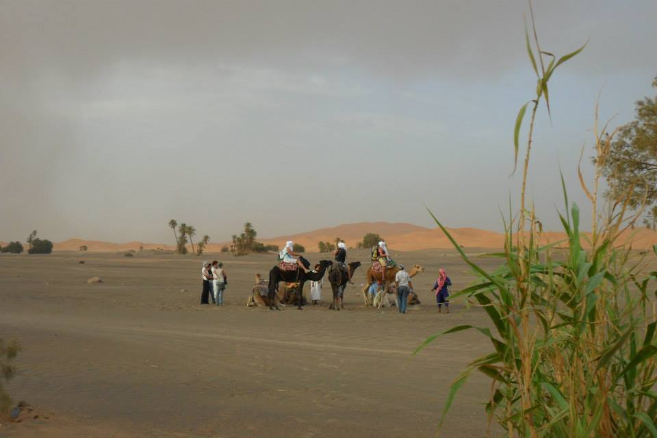 Tourists Riding Camels in Moroccan Sahara