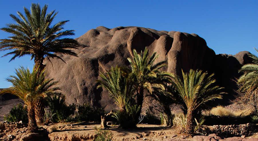 The nature of Ouarzazate