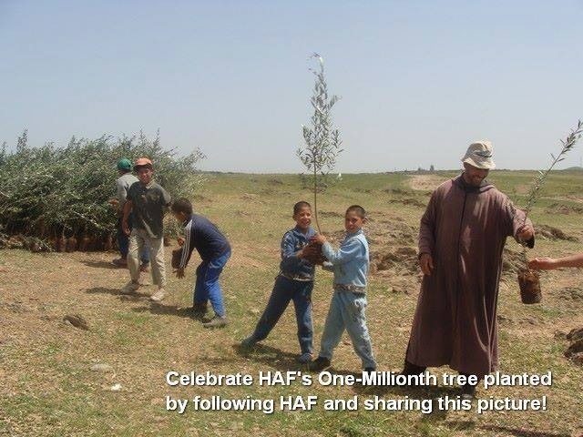 Morocco and the High Atlas Foundation Celebrate World Environment Day