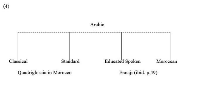 It should be evident that the Moroccan linguistic situation is characterized by both diversity and complexity
