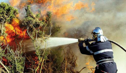 Forest Fire Contained after Ravaging 7 Hectares of Vegetation Northern Morocco