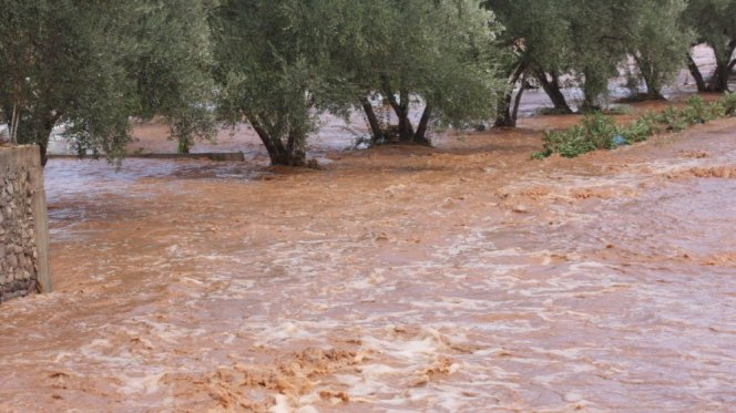 Floods in Morocco: World Bank Accuses Government of Neglect, Unpreparedness
