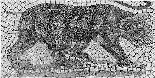 Photo from Wikimedia: Mosaic of the extinct Atlas bear