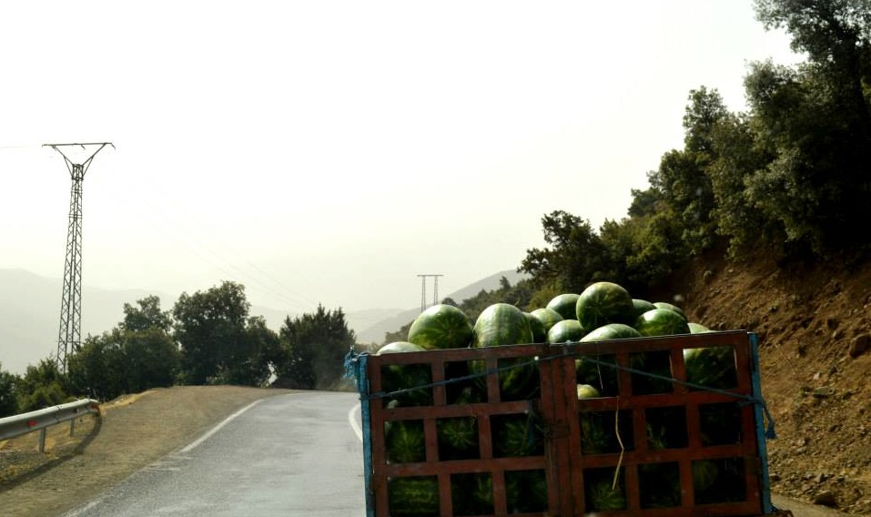 Enjoy the Best Juicy Watermelon in Morocco