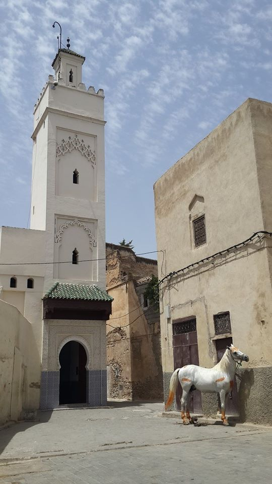 In Fez, a mosque in the old Medina