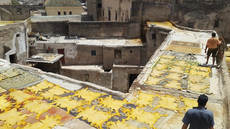 Tanneries in fez Medina