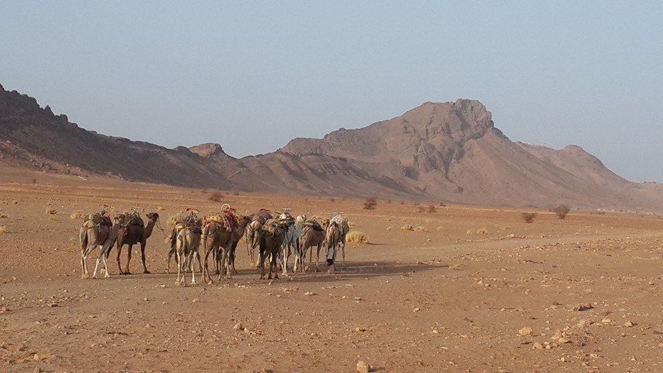 The Moroccan Sahara