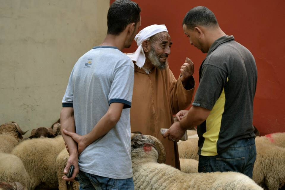 The men bargain the price of the sheep they will buy to celebrate the Eid.