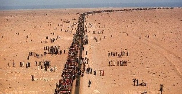 The Green March- An Eternal Day in Moroccans Memories