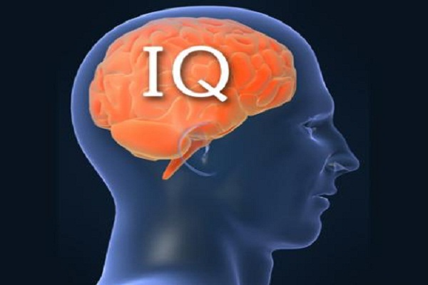 Moroccans Among People with the Lowest IQ in the World