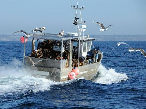 Morocco Wants MAD 800 Million for EU Fisheries Deal