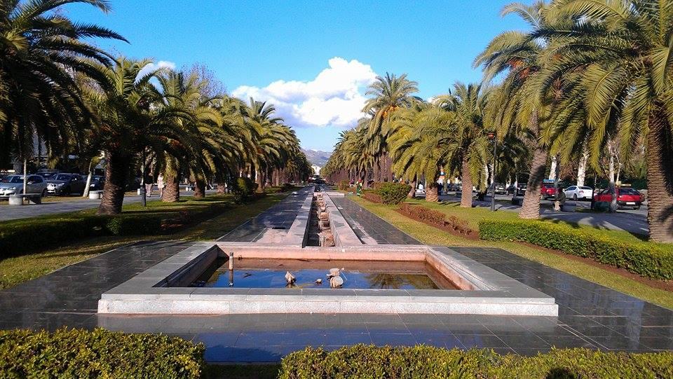 The garden along Hassan II Boulevard, Fez