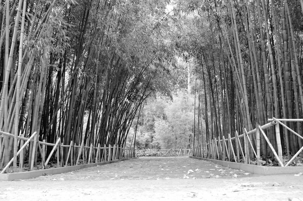 The garden of Jnan Sbil