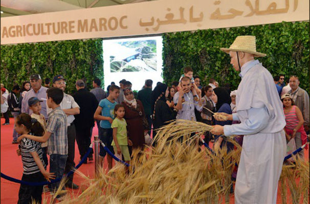 Moroccan International Agriculture