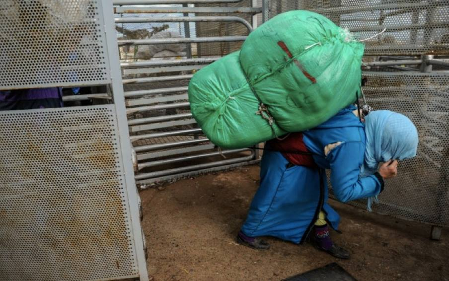 Moroccan Mule women The bales' weight varies from 60 to 80 kg
