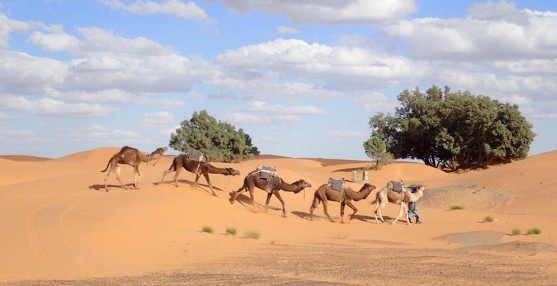 Simply visiting Morocco