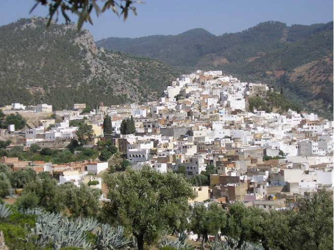 The town of Moulay Idriss Zerhoun. Photograph courtesy of author.