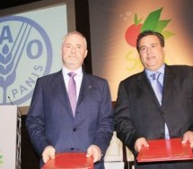 Morocco Receives FAO Distinction for Achieving MDG of Extreme Poverty, Hunger Reduction