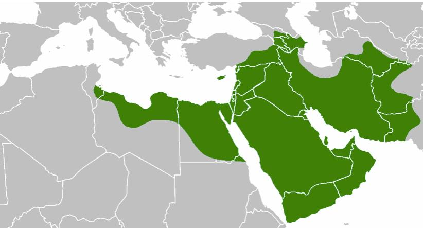 Map of Islamic conquests under the Caliph Uthman 654 AD