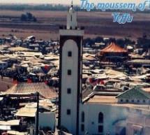 The Mashdud (episode IV)