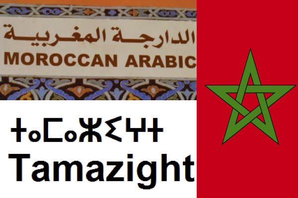 What Chomsky Would Realize if He Studied Amazigh and Moroccan Darija