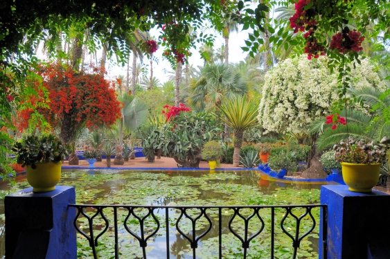In pictures jardin majorelle in marrakech