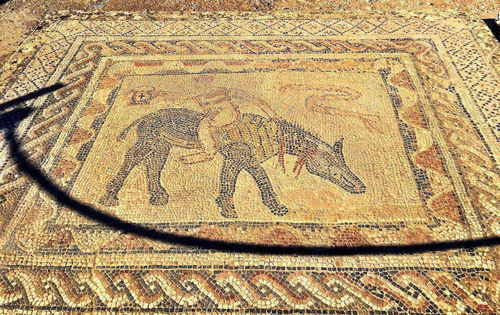 Volubilis: Detail of mosaic