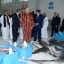 King Mohammed VI Inaugurates New Fish Market in Dakhla