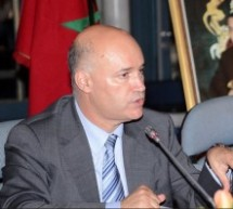 Moroccans abroad Can't Participate in 2016 Elections : Minister