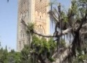 Ultra HD Video Shows Rabat's Fantastic Beauty