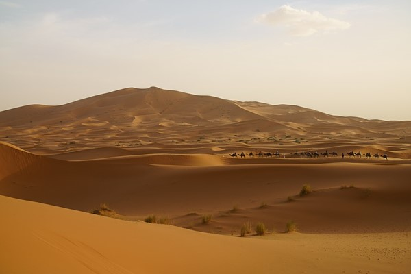Moroccan golden dunes in Merzouga