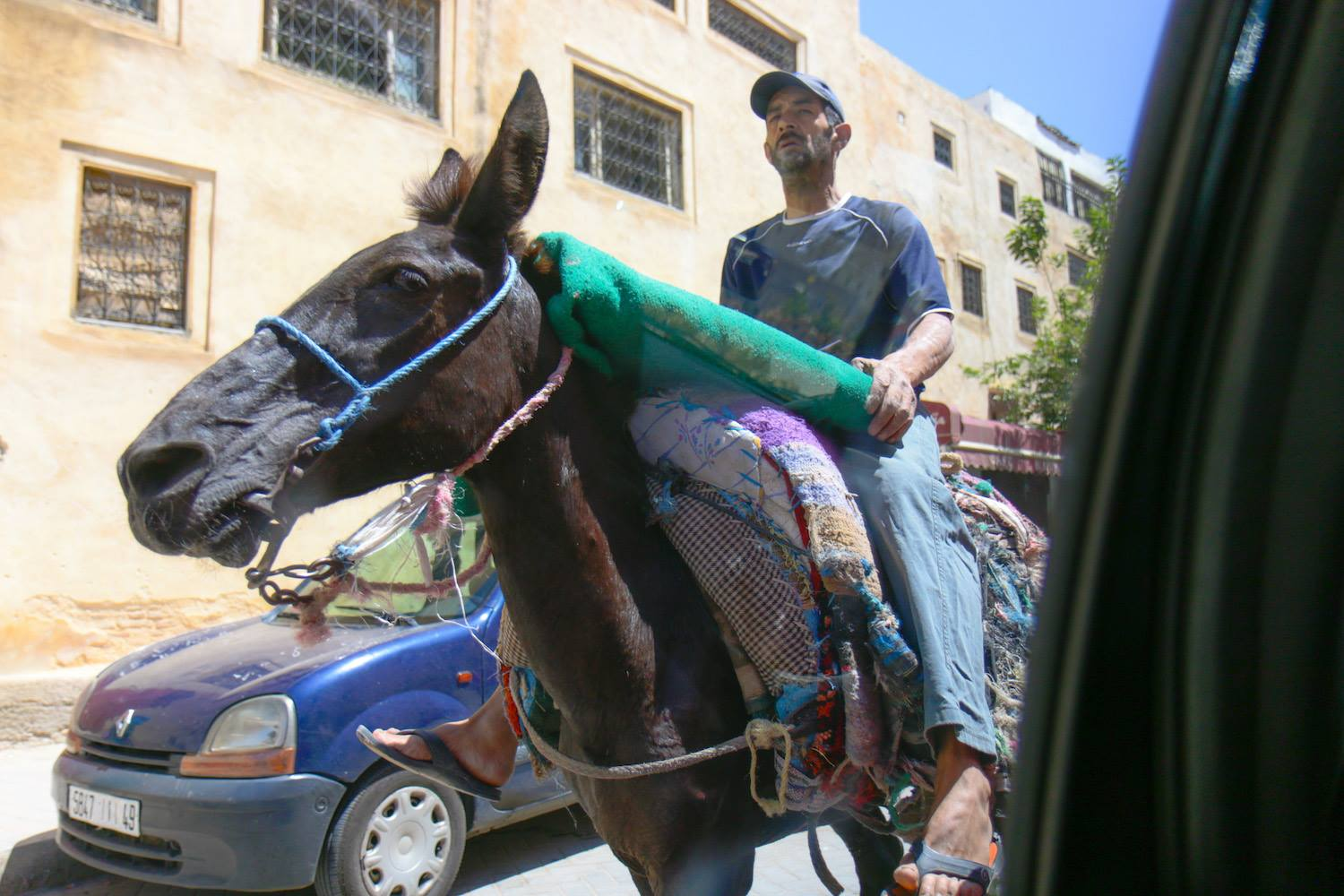 The only means of transportation in Fez Medina are horses and carts