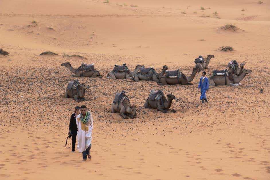 Camel riding in Merzouga