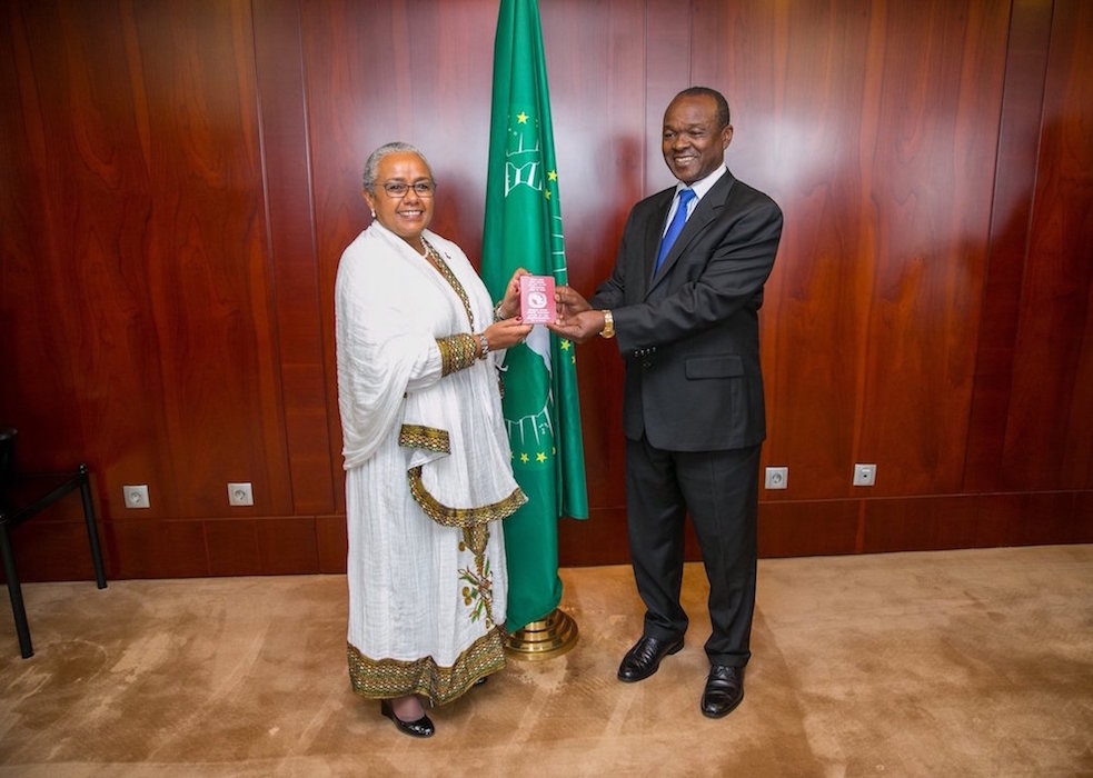 Will The New African Union Passport Bring Unity or