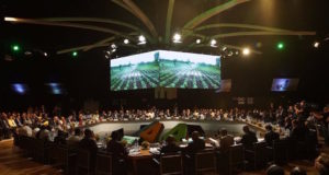 Africa Seeks to Adapt its Agriculture to Climate Change Ahead of COP22