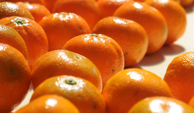 Moroccan angerines, clementines