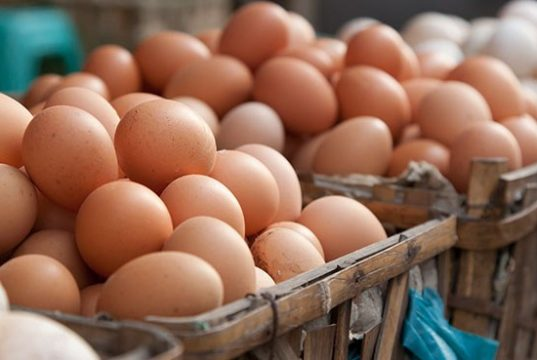Average Moroccan Consumer Consumed 180 Eggs in 2017